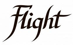 Музыкальные инструменты Flight