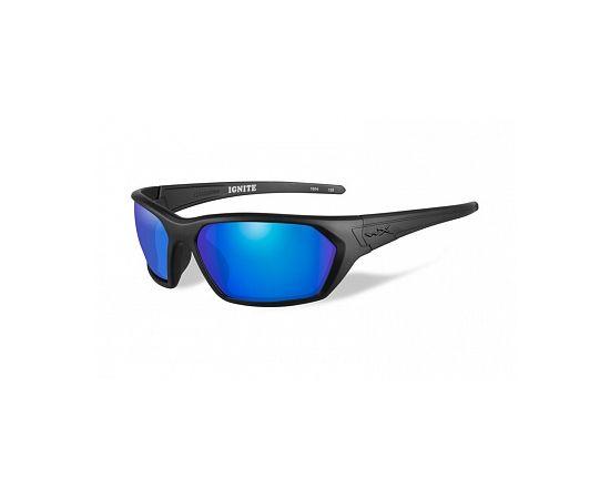 Поляризационные мужские очки Wiley-X ACIGN09